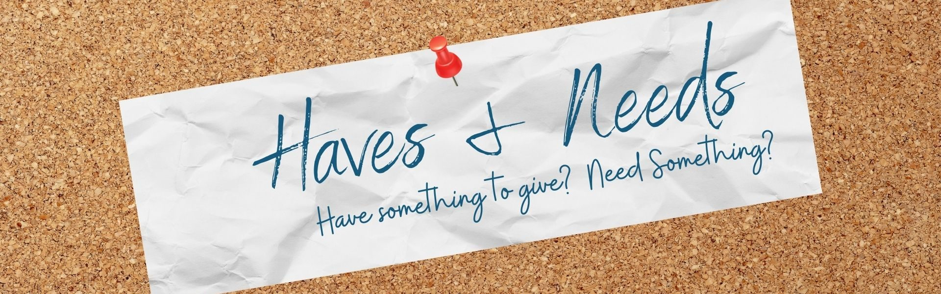 Copy of Haves & Needs newsletter3